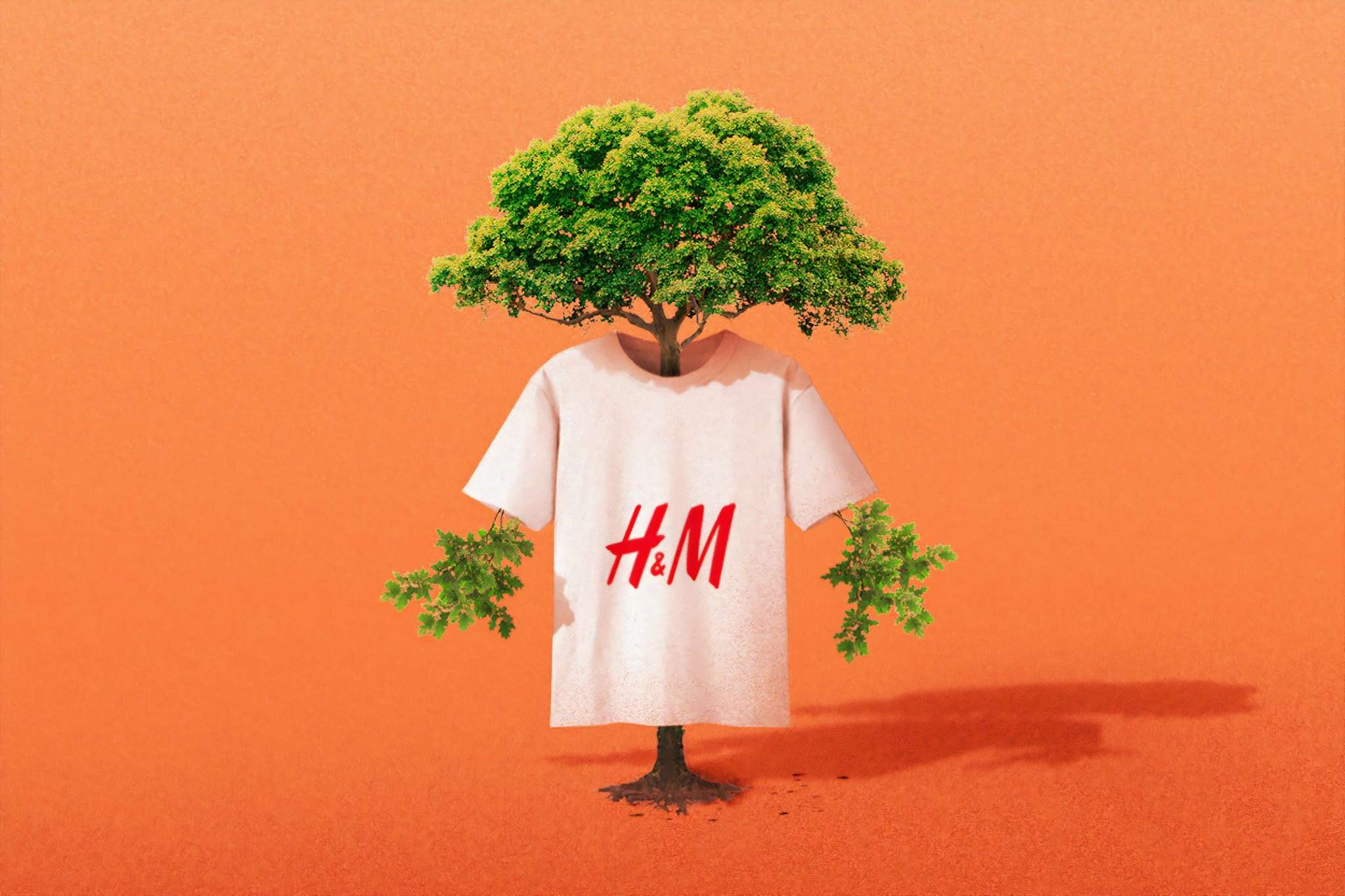 H&M quand la fast fashion tue